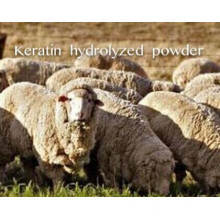 (Keratin Hydrolyzed Powder) ---Keratin